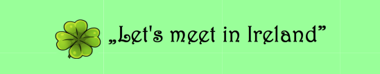 Let's meet in Ireland – wyniki konkursu
